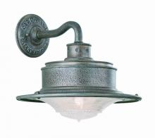 Troy B9390OG - 1Lt Wall Downlight